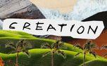 Creation (88460)