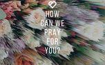 Pray for you (88479)