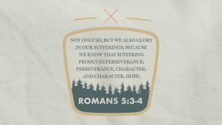 Scripture Motion