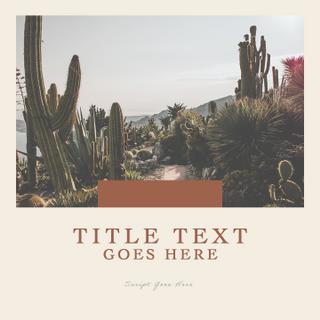 Desert Template | Five
