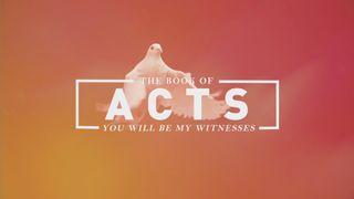 Acts Stills