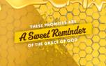Sweet Like Honey (89083)