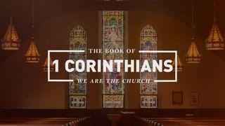 1 Corinthians Title Motion