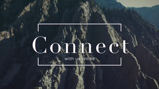 Slate Cliff : Connect