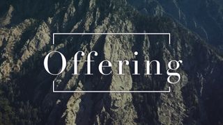 Slate Cliff : Offering