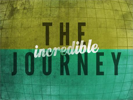 The Incredible Journey (9230)