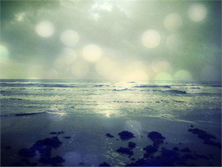 At The Beach (9266)