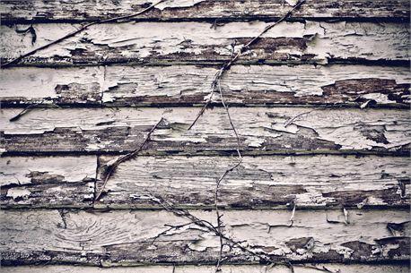 Wall (9608)