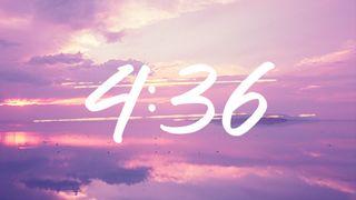 FuchsiaSunset : Countdown