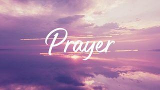 FuchsiaSunset : Prayer