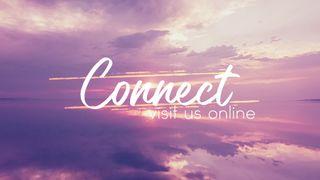 FuchsiaSunset : Connect
