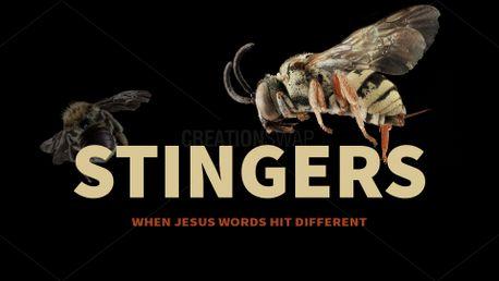 Stingers (90161)