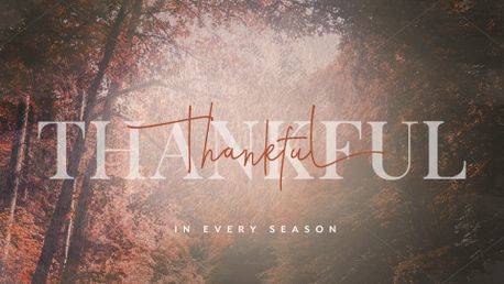 Thankful (90496)