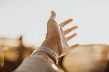 Hand (90564)