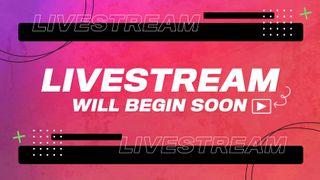 Livestream Overlay Title