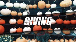Pumpkin Patch Giving