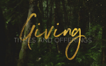 ForestGold_Giving (91178)