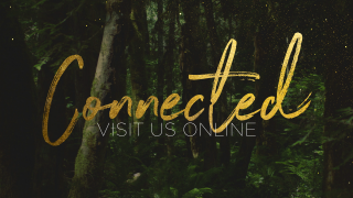 ForestGold_Connect
