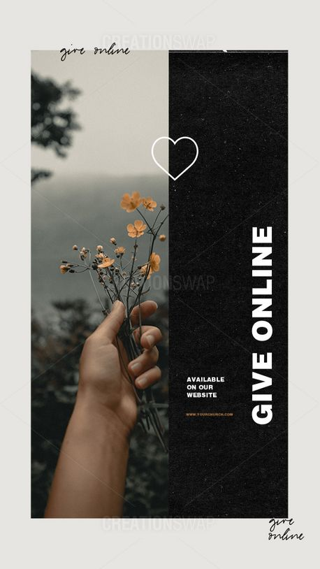 Give Online  (91271)