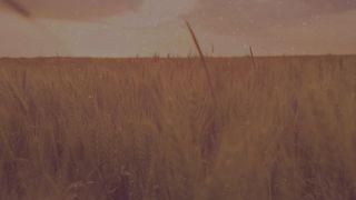 Harvest Motion