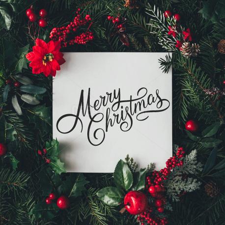 Merry Christmas (91447)