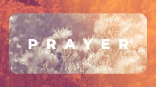 Sage Orange_Prayer