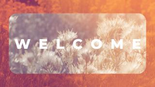Sage Orange_Welcome
