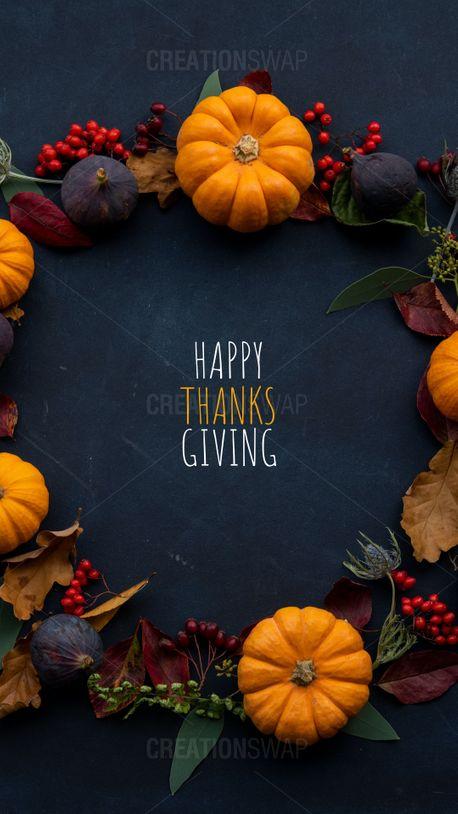 Thanksgiving (91648)