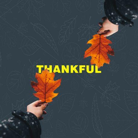 Thankful (91664)