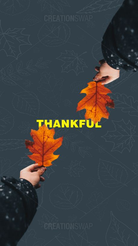 Thankful  (91665)