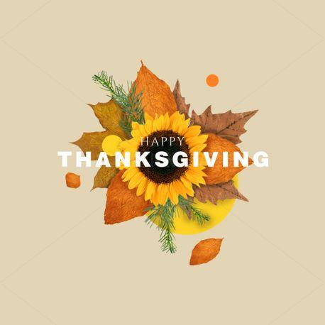 Happy Thanksgiving! (91668)