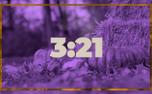 Purple Pumpkin Timer (91754)