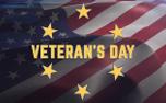Waving Flag Veteran's Day (91766)
