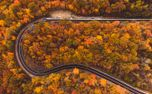 Winding road in autumn (92172)