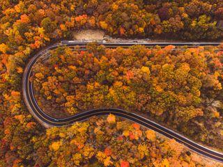 Winding road in autumn