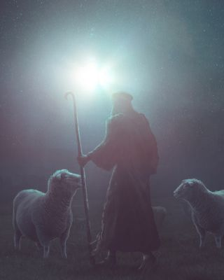 Shepherd at night