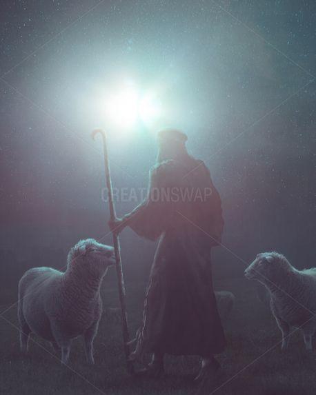 Shepherd at night (92191)