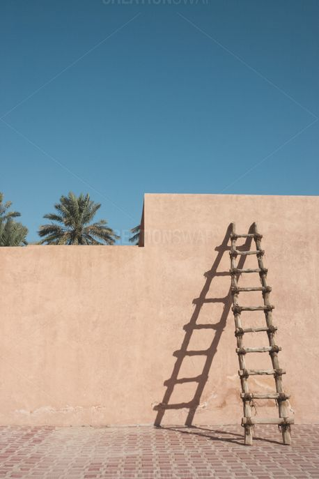 Ladder On Wall (92356)