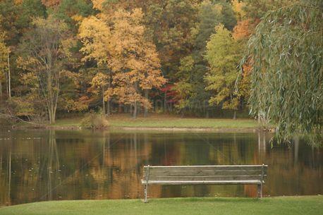 Fall Park Bench (92360)