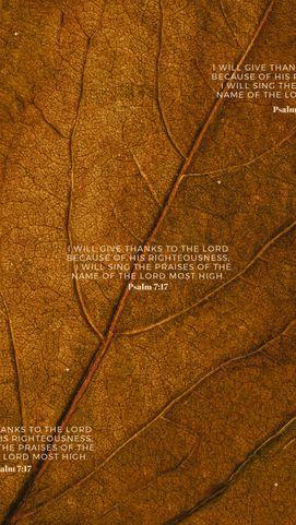 Psalm 7:17