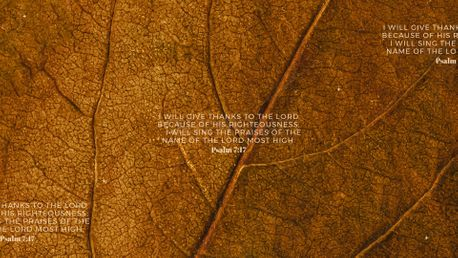 Psalm 7:17 (92418)