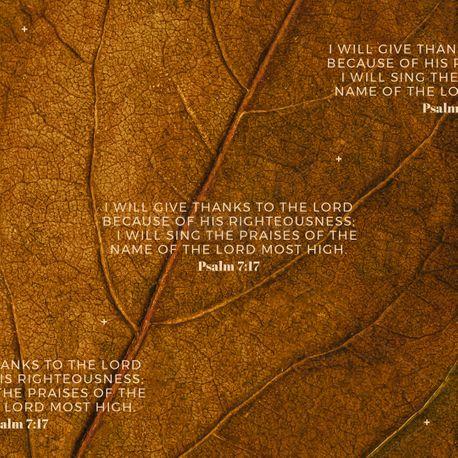 Psalm 7:17 (92419)