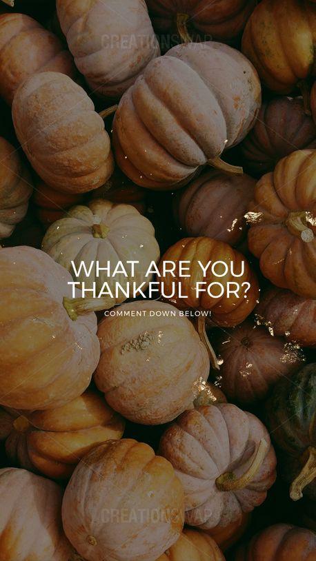 Thanksgiving (92424)