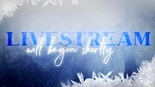 Navy Ice : Livestream