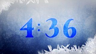 Navy Ice : Countdown