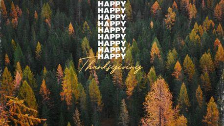 Happy Thanksgiving (92689)