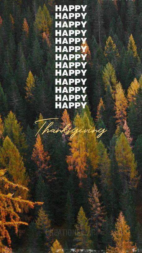Happy Thanksgiving  (92691)