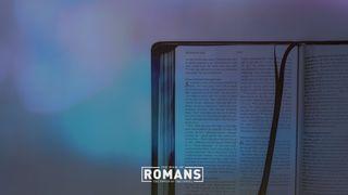 Romans Blank Motion
