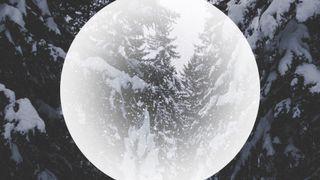 ForestGlobe : Loop