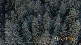 Christmas Volume Five Motion